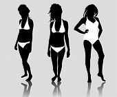image of lap dancing  - Collection of women in bikini vector in black - JPG