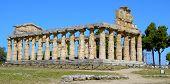 temple of Cecere - Paestum Italy