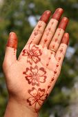 Indian Girls hand with Mehandi