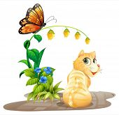 Illustration of a cat and a butterfly