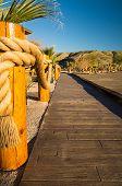 Tropical Boardwalk