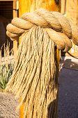 Fringed Rope