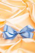 Blue Ribbon Satin Bow