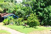 Residential house with garden, district Koggala, Sri Lanka