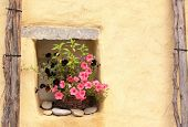 Flowerpot with petunias and stucco wall