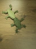 Green Origami Frogs kissing