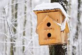 Wooden birdhouse hanging on the tree at winter