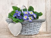 Romantic Flowers Basket
