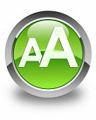 Font Size Icon Glossy Green Round Button