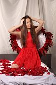 Valentines Beauty Girl With Big Red And White Wings