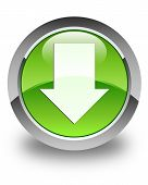 Download Arrow Icon Glossy Green Round Button