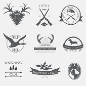 picture of duck-hunting  - Set of vintage hunting  labels and design elements - JPG