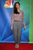 LOS ANGELES - JAN 16:  Thandie Newton at the NBC TCA Winter 2015 at a The Langham Huntington Hotel on January 16, 2015 in Pasadena, CA