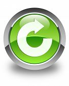 Reply Arrow Icon Glossy Green Round Button