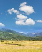 Landscape of paddy farm under blue sky in Hualien, Taiwan, Asia.