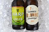 Harp And Guinness Blonde On Ice Closeup