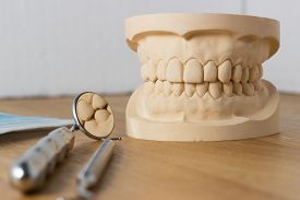 foto of false teeth  - Dental mold of a set of false teeth with dental tools on a wooden table arranged so that the mirror reflects the teeth in a dentistry and healthcare concept - JPG