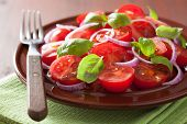 picture of vinegar  - healthy tomato salad with onion basil olive oil and balsamic vinegar - JPG