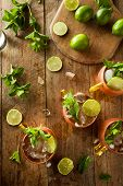 picture of mule  - Icy Cold Moscow Mules with Ginger Beer and Vodka - JPG