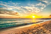 picture of caribbean  - Beautiful sunset over the sea with a view at stony shore on the white beach on a Caribbean island of Barbados - JPG