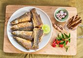 image of mullet  - fried mullet fish and herb on white plate - JPG