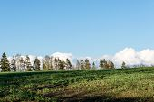pic of early spring  - countryside fields in early spring with clouds and farmland - JPG