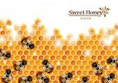 image of honeycomb  - Honey Background with Bees Working on a Honeycomb - JPG