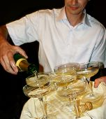 Champagne And Barman