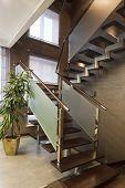 Modern Ladder
