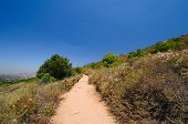 California Mountain Trail