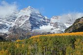 Maroon Bells And Autumn Aspens