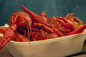 Plate of Crawdads