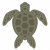 stock photo of green turtle  - Vector graphic illustration of a Green Sea Turtle - JPG
