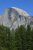 Half Dome At Yosemite