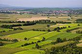 Agricultural landscape, fileds