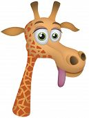 Giraffe Vector Cartoon Illustration