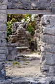 Path Through Mayan Ruins At Tulum