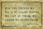 For The Things We Have To Learn Before We Can Do Them, We Learn By Doing Them - Ancient Greek Philos poster