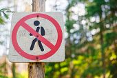 No Crossing Or No Walking Old Wooden Sign Post. Sign No Pedestrians Access In Mountains On Natural B poster