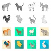 Vector Illustration Of Breeding And Kitchen Logo. Set Of Breeding And Organic Vector Icon For Stock. poster