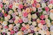 Beautiful Decorative Colorful Roses Background. Traditional Wedding Party Decor Detail. Pastel Flowe poster
