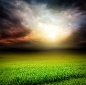 Dark Sky Green Field Of Grass With Sun Light