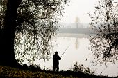 Silhouette Of Fisherman On River Bank. Elderly Man With Fishing Rod And Lonely Tree In Morning Fog.  poster