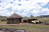 pic of zulu  - Landscape of rural zululand - JPG