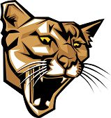 Cougar Panther Mascot Head Vector Graphic