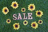 Sale Grass Flowers