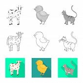 Isolated Object Of Breeding And Kitchen Symbol. Collection Of Breeding And Organic Stock Vector Illu poster
