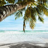 Tropical Beach In The Morning