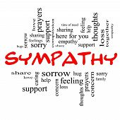 foto of sympathy  - Sympathy Word Cloud Concept in Red Caps with great terms such as sorrow feelings loss support prayers thoughts and more - JPG