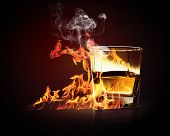 picture of absinthe  - Image of glass of burning yellow absinthe - JPG